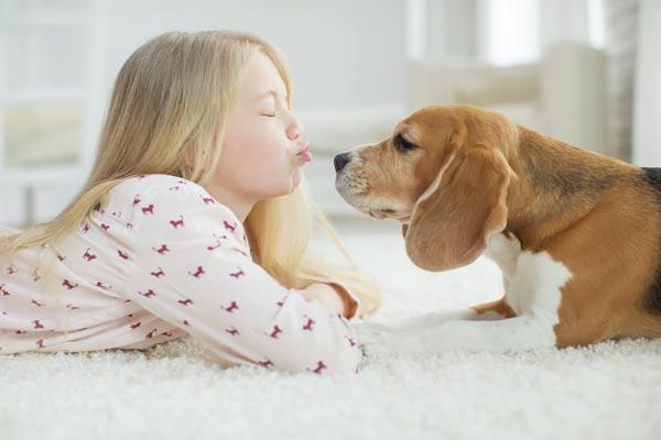 Four ways animals improve children's development